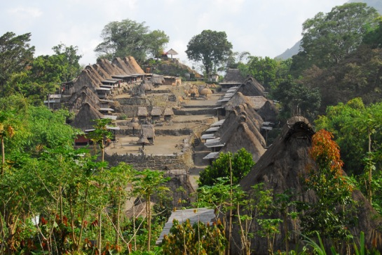 Bena Village Flores by Iswan
