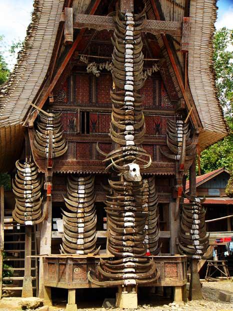 Tongkonan and The Horns