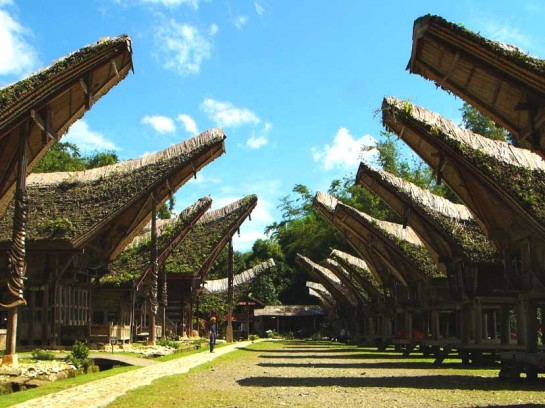 Tana Toraja Traditional House